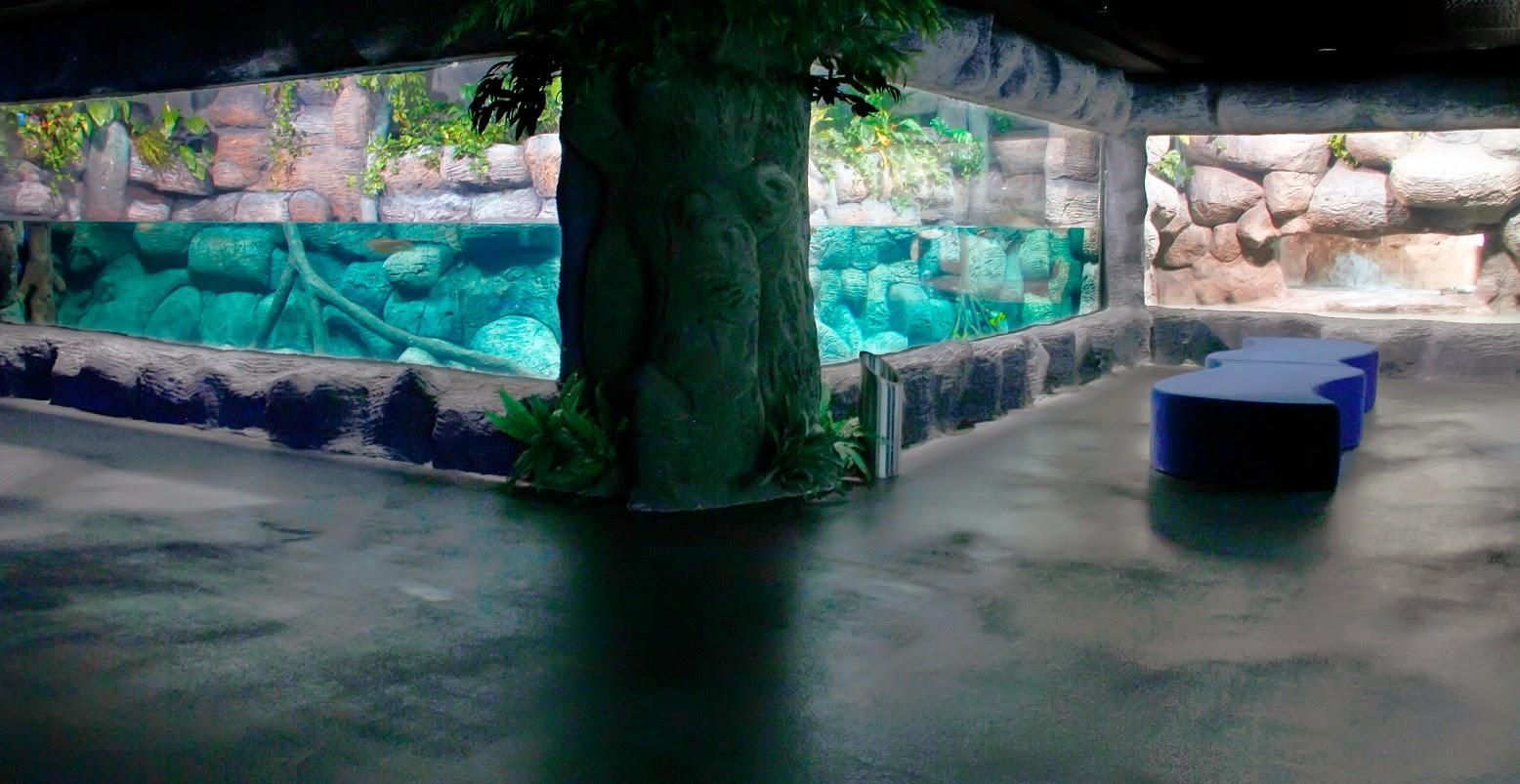 Aqua Vega Akvaryum'da eğlenceli bir gün geçirilebilir.